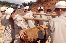 Organización no gubernamental apoya a Vietnam en alivio de secuelas de guerra