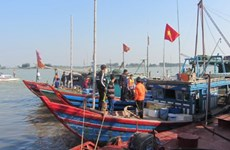 Provincia de Thanh Hoa adopta medidas para impulsar el sector pecuario