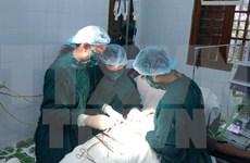 Vietnam y Alemania cooperan en formación de médicos
