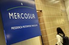 Impulsan diálogo entre ASEAN y Mercosur