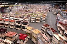 Vicepremier de Vietnam visita en Países Bajos mayor mercado mundial de flores