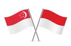 Singapur e Indonesia impulsan cooperación económica