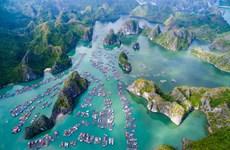 Prepara Vietnam documentos para solicitar reconocimiento de zona Ha Long - Cat Ba como patrimonio mundial