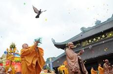 Ninh Binh conmemora el Día de Vesak 2017