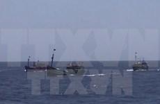 Prohibición de pesca de China en aguas de Vietnam no tiene valor