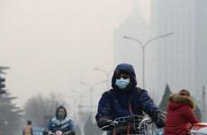 Indonesia asegura a sus vecinos de ASEAN que no habrá problemas de neblina
