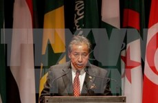 Malasia aspira a desplegar con prontitud el COC