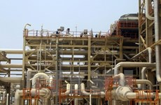 Vietnam y Australia buscan oportunidades de cooperación energética