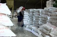 Exportación arrocera de Vietnam reporta señales optimistas