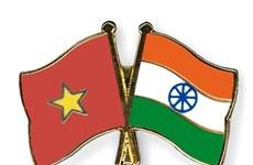 Ejércitos de Vietnam e India fomentan cooperación en formación del personal