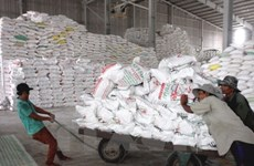 Filipinas planea importar 250 mil toneladas de arroz en junio