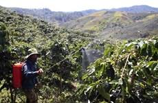 Región altiplana vietnamita llama a inversiones sudcoreanas