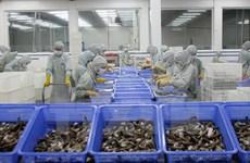 Vietnam busca medidas para elevar valor del sector camaronero