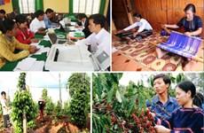 Crece inversión social en región altiplánica vietnamita