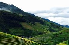 Terrazas de arroz de Mu Cang Chai, un lugar donde reina la belleza