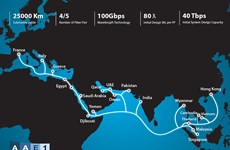 Grupo vietnamita de telecomunicaciones operará cable submarino intercontinental