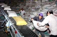Vietnam planea reducir exportaciones de arroz