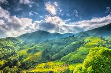 Periódico de EE.UU. recomienda 12 experiencias turísticas para explorar Vietnam
