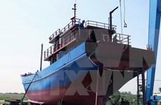 Thanh Hoa inspecciona calidad de barcos pesqueros