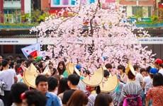 Celebrarán en Da Nang programa de intercambio cultural Vietnam- Japón