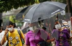 Registran brotes de gripe aviar en Myanmar