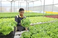 Desarrollan agricultura inteligente en Vietnam para afrontar cambio climático