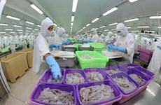 Vietnam registra gran crecimiento de exportaciones de productos silviagrícolas y acuícolas