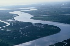 Vietnam busca estimular desarrollo turístico del delta del río Mekong
