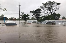 Vietnam envía pésame a Tailandia por pérdidas provocadas por inundaciones