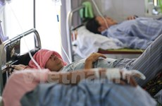 Fortalecen lucha contra dengue en Hanoi