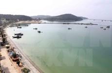 Ca Mau llama a inversiones para desarrollo de puerto marítimo