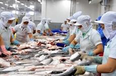 Exportaciones vietnamitas de pescado Tra a EE.UU. se mantienen estables