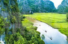 Vietnam impulsa promoción turística en Australia