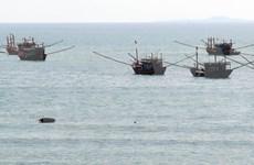 Banco vietnamita respalda a pescadores nacionales mediante préstamos preferenciales