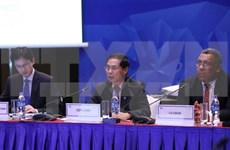 APEC Vietnam 2017: varias actividades en última jornada de comités y grupos concerniente de SOM3