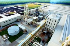 Entra en operación fábrica multimillonaria de FDM en provincia vietnamita