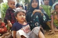Consejo de Seguridad de la ONU debate sobre violencia en Myanmar