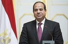 Visita de presidente egipcio a Vietnam abrirá nuevos horizontes en relación binacional