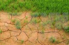 Reitera Vietnam compromiso de reforzar conservación medioambiental