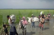 Éxodo de rohingyas de Myanmar a Bangladesh se acerca a los 300 mil