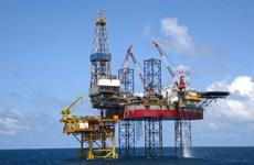 Corporación vietnamita de perforación petrolera gana contrato multimillonario