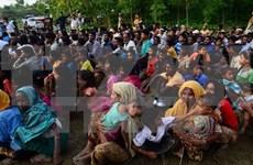 Más de 370 mil myanmenos huyen a Bangladesh por violencia en Rakhine