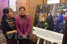 Parlamento vietnamita analiza informe del gobierno sobre igualdad de género