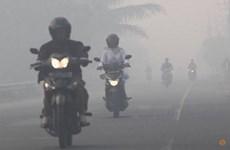 Indonesia detecta 27 puntos con riesgo de de incendio forestal