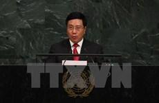 Vicepremier vietnamita ante la ONU: Mantener la paz debe ser la mayor prioridad