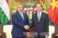 Presidente de Vietnam resalta nexos con Hungría