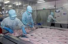 Exportaciones de pescado Tra de Vietnam se mantienen estables
