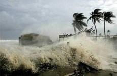 Expertos alemanes comparten informaciones sobre cambio climático en Vietnam