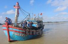 Provincia vietnamita de Thua Thien-Hue respalda al sector pesquero