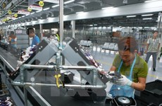 Gobierno vietnamita adopta plan para impulsar desarrollo del sector privado
